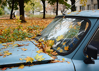 Tips To Avoid Auto Glass Repair This Fall